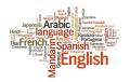 idiomas exóticos